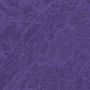 background purple
